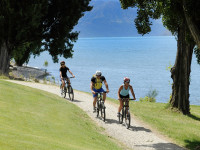 Wanaka cycling